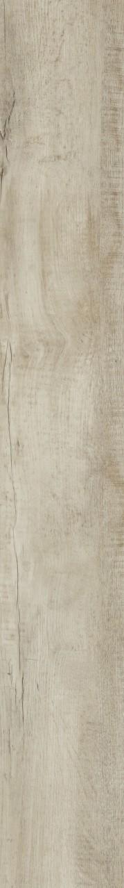 Moduleo Country oak 54225